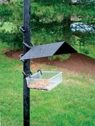 APS Side Dish Feeder w/ Weather Guard