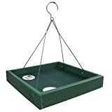 Going Green Hanging Tray feeder