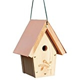 Copper-top Chickadee House